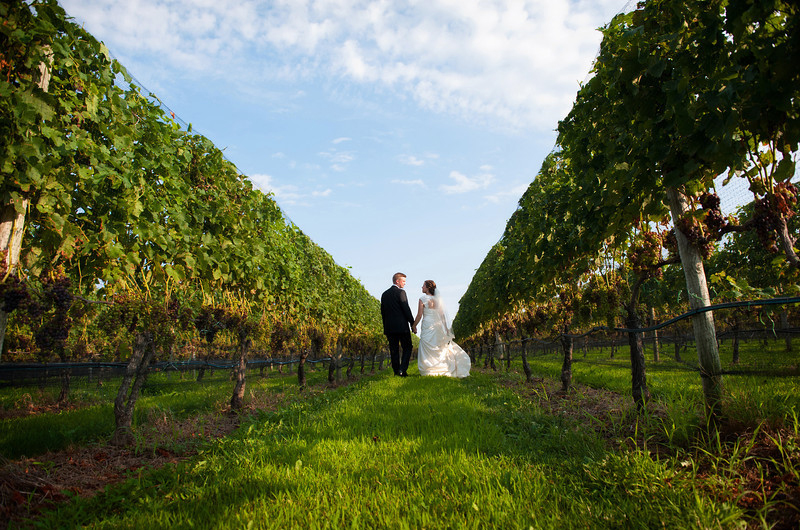 North fork winery wedding